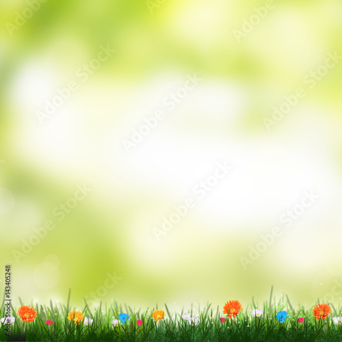 Abstract Spring Time Background With Flowers Nature Summer Floral Wallpaper