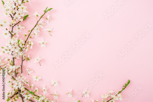 Poster Fleur Spring white flowers isolated on pink background. Flat lay, top view. Floral background. Frame.