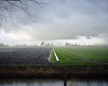 AGRICULTURAL Fields In The Netherlands In The Winter.