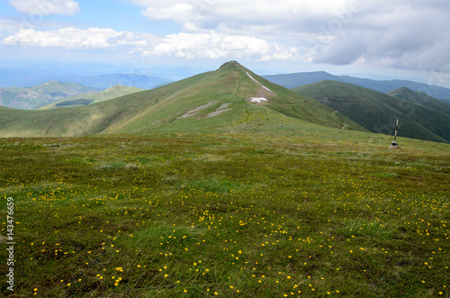 Photo Stands Pale violet Green meadow and mountain peaks in Osogovo range, Bulgaria