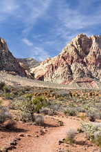 Trail Through The Desert Canyon