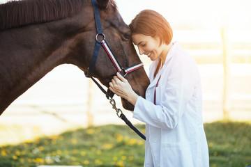 Vet petting a horse outdoor...