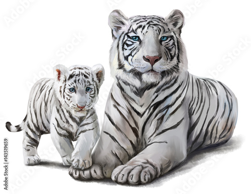 White tigers watercolor painting Wallpaper Mural