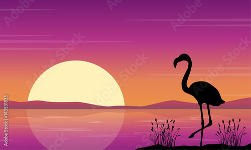 At lake scene with flamingo silhouettes