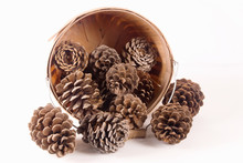 Pine Cones In An Old Wooden Basket