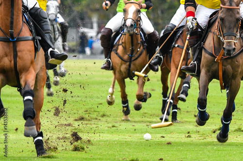 Horses running in a polo match.