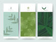 Branding Packaging Flower nature background, logo banner voucher, spring summer tropical, vector illustration