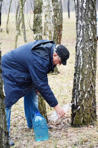 Valokuva  Mature man recollecting birch juice