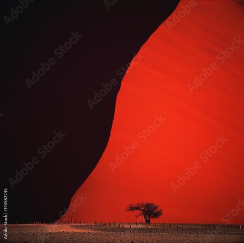 Poster de jardin Rouge desert