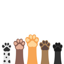 Paws Up Pets Set Isolated On White Background. Vector Illustration.