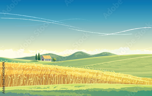 Foto op Canvas Pistache Rural landscape with wheat field and house on the hill.
