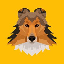 Vector Collie Breed Dog Face On Yellow Background Symbol Of New 2018 Year