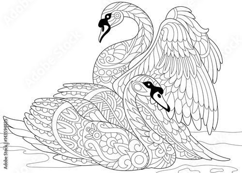 Fototapeta premium Stylized couple of swans swimming in the pond or lake water. Freehand sketch for adult anti stress coloring book page with doodle and zentangle elements.