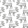 Seamless pattern with Reindeer.
