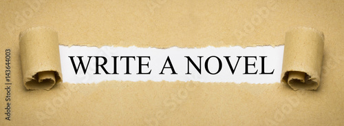 Stampa su Tela Write a Novel