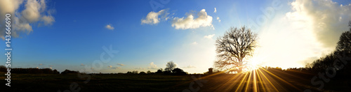 Fotografia, Obraz  Panorama einer Landschaft mit Wiesen und Bäumen bei Sonnenuntergang