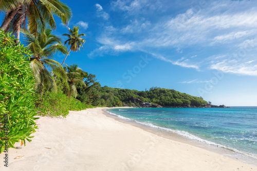 Foto-Kissen - Exotic sandy beach. (von lucky-photo)