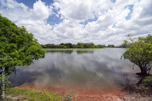 Fotografie, Obraz  Outback Billabong in Northern Territory