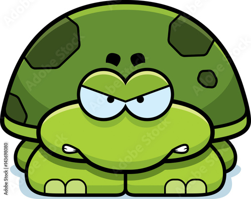 Photo  Angry Little Turtle