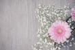 canvas print picture - Blumen Hintergrund