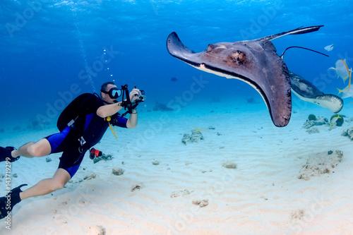 Fotografia SCUBA diver and Stingray underwater