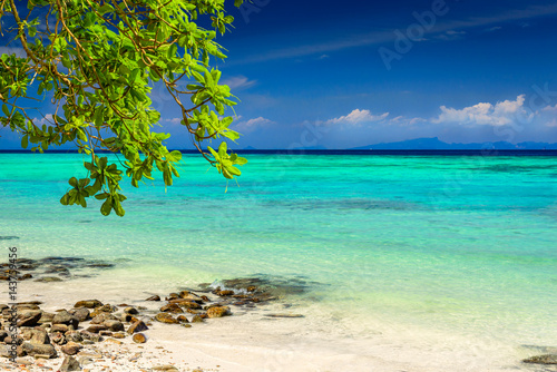 Photo  Beautiful tropical beach, rocks, exotic plant leaves and clear turquoise sea water