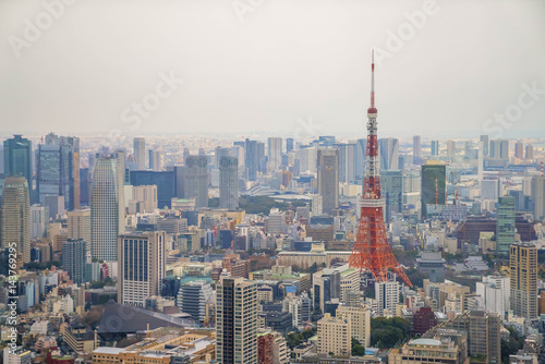 Tuinposter Tokio Tokyo Tower and urban city skyline at dusk sunset blue hour, view from high level building