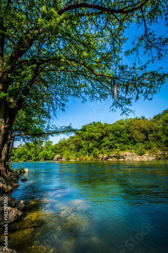 Poster Texas Guadalupe River New Braunfels, Texas