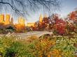 Bow bridge Central Park autumn