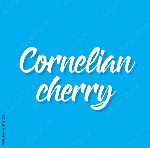 cornelian cherry, text design Tapéta, Fotótapéta