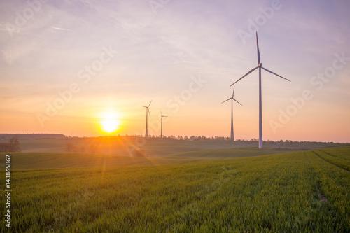 Zdjęcie XXL Wiatraczki (turbiny wiatrowe) w polu o wschodzie słońca
