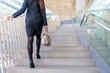 business woman going up the stairs back view