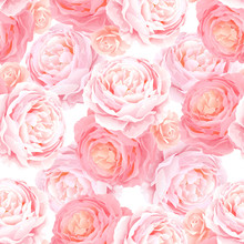 Seamless Pattern With Elegance Color Pink Roses. Natural Floral Background.