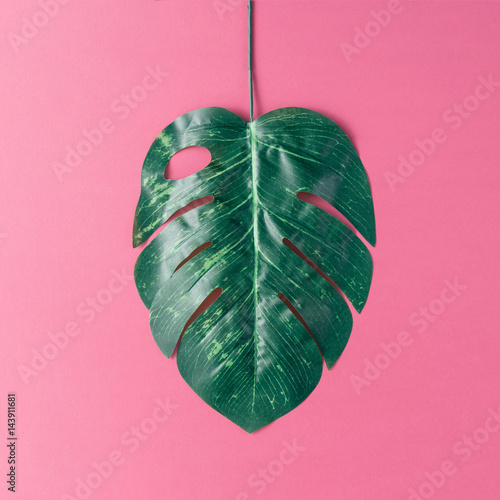 Fotobehang Candy roze Tropical palm leaves on pink background. Minimal nature summer concept. Flat lay.