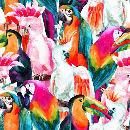 wzor-akwarela-papugi