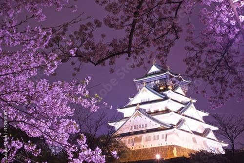 夜の大阪城と桜 Slika na platnu