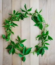 DIY Festive Wreath Border With Grape Leaves On Rustic Wooden Background For Greeting Cards And Labels