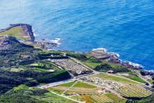 Farmland And Ocean View