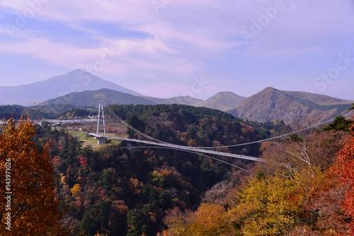 Staande foto Purper 九酔渓と九重大吊橋