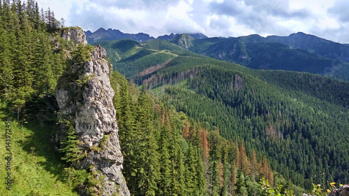 mountain-landscape-with-a-stone-cliff-and-forest-view-from-mount-nosal-tatry-poland