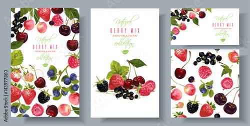 Fotografía  Berry mix banners set