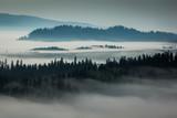 Tatry i lasy we mgle, Zakopane, Polska - 143978476