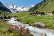canvas print picture - Almhütten mit Gebirgsbach Alpenrosen und Gletscher im Hintergrund