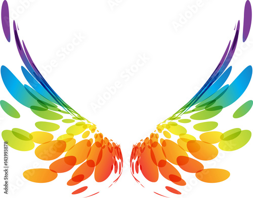 Fototapeta Pair colorful wings on white obraz