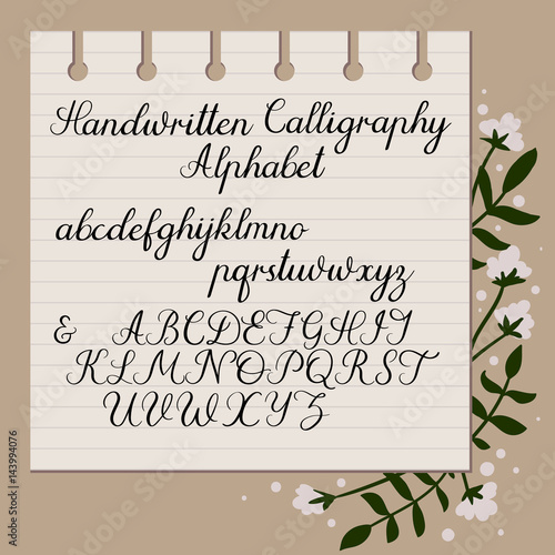 Calligraphy Decorative Alphabet Handwritten Uppercase Lowercase Letters Hand Drawn Script Wedding