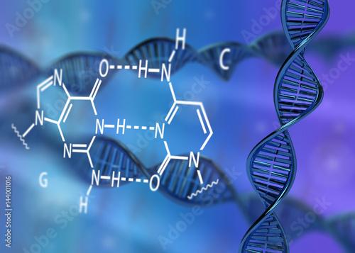 DNA molecule double helix GC base pair 3D rendering Wallpaper Mural