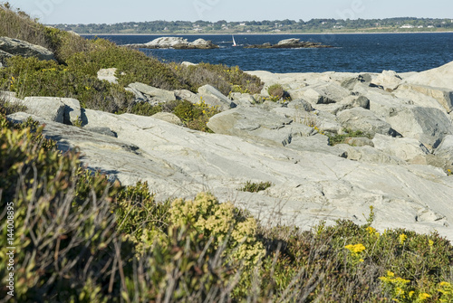Photo  Rocky shoreline at Sachuest Point