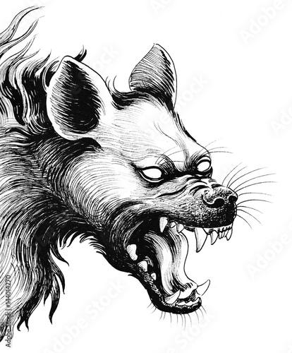 Fotografia, Obraz Scary hyena