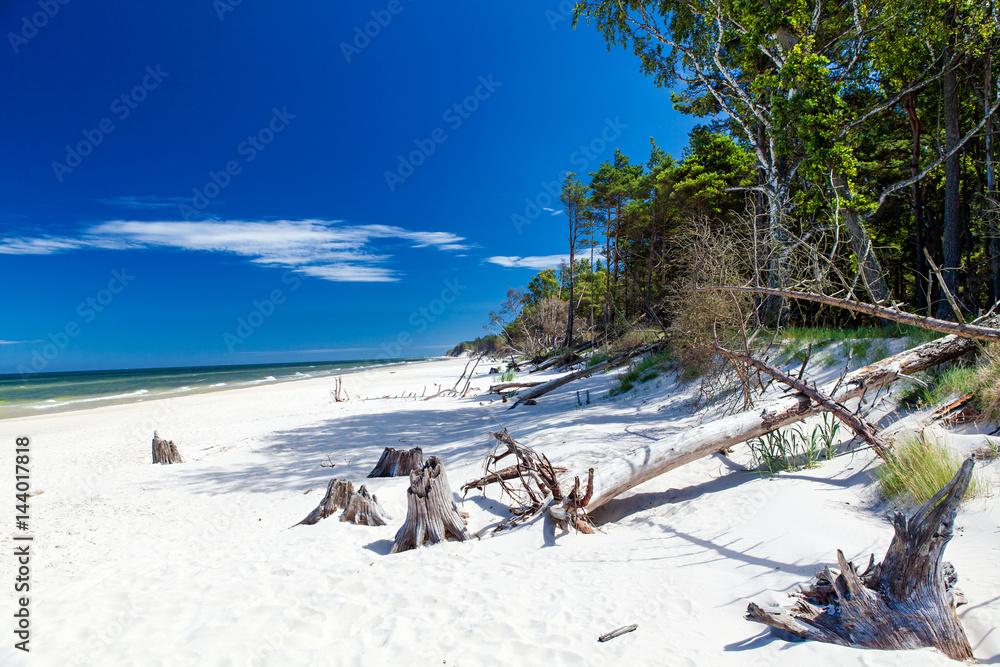 Fototapeta Plaża pod Łebą