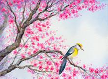 Beautiful Bird On Flowering Br...